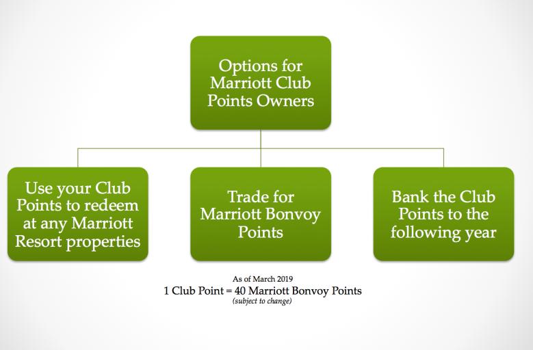options_club